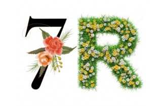 The 7 R's of sustainability: Rethink, Refuse, Reduce, Reuse, Re-use, Recycle, and Recover