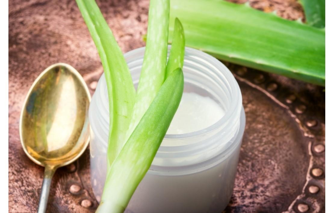 Aloe vera: Homemade Amalgamas