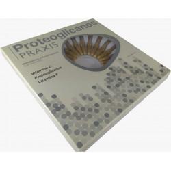 Proteoglicanos Praxis - 24 Ampolas