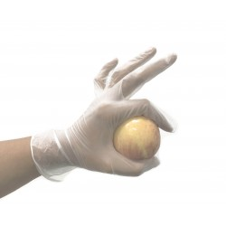 Powder Free Vinyl Gloves - 100 units - Low Cost